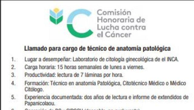 imagen de Llamado para cargo de técnico de anatomía patológica Nº 1/2021
